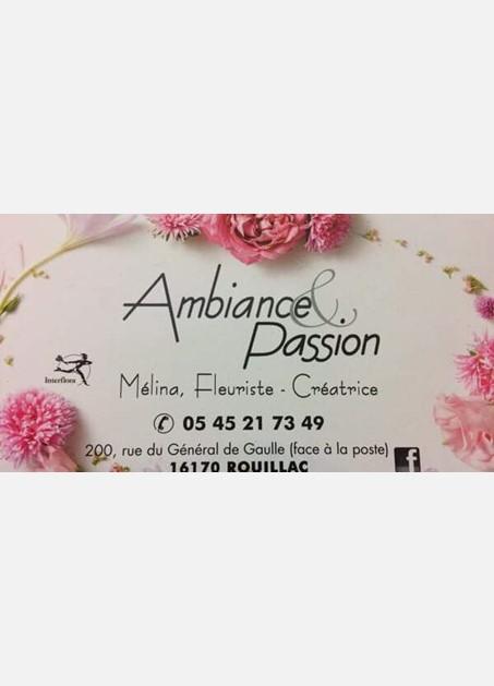 logo ambiance et passion